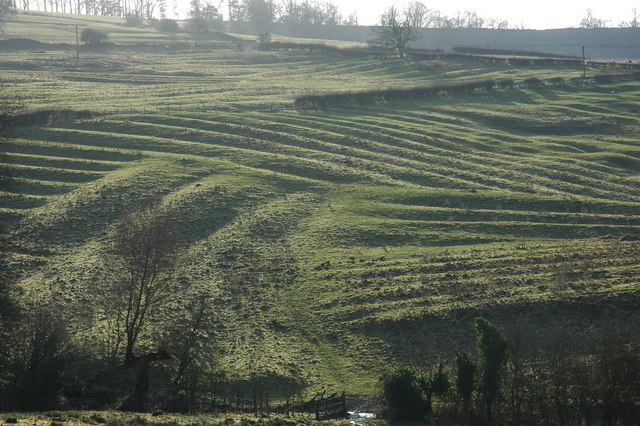 """Medieval Ridge and Furrow above Wood Stanway - geograph.org.uk - 640050"" by Philip Halling. Licensed under CC BY-SA 2.0 via Commons - https://commons.wikimedia.org/wiki/File:Medieval_Ridge_and_Furrow_above_Wood_Stanway_-_geograph.org.uk_-_640050.jpg#/media/File:Medieval_Ridge_and_Furrow_above_Wood_Stanway_-_geograph.org.uk_-_640050.jpg"